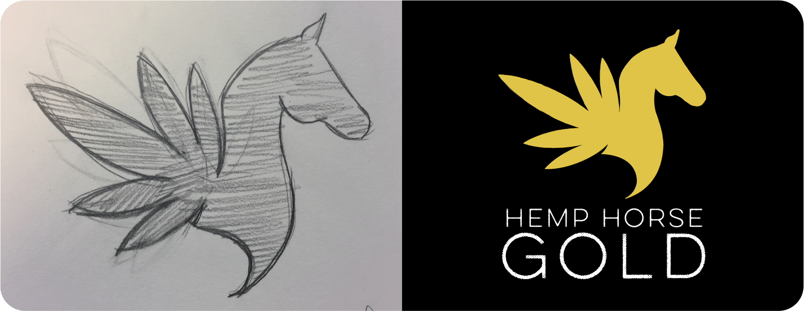 Hemp Horse logo design process, from sketch to finished product